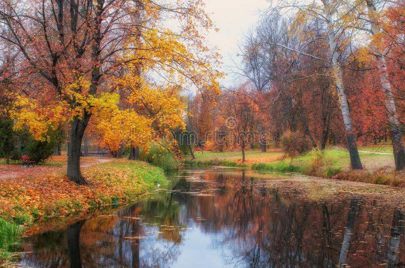 Autumn scenery with colored trees reflected in the river, Arboretum Oleksandriya, Bila Tserkva, Ukraine. Autumn scenery with colored trees reflected in the Ros stock photography