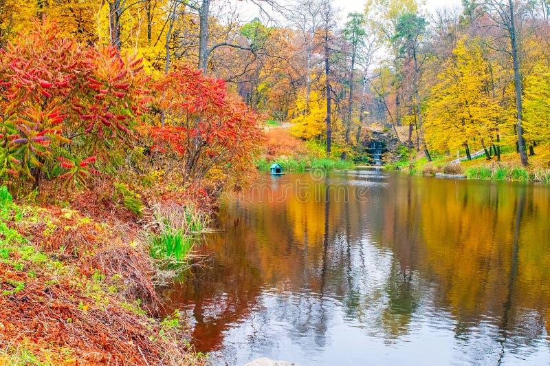 Autumn scenery with colored trees reflected in the water, Arboretum Oleksandriya, Bila Tserkva, Ukraine. Reflection multicolored seasonal autumnal fall picture stock photos