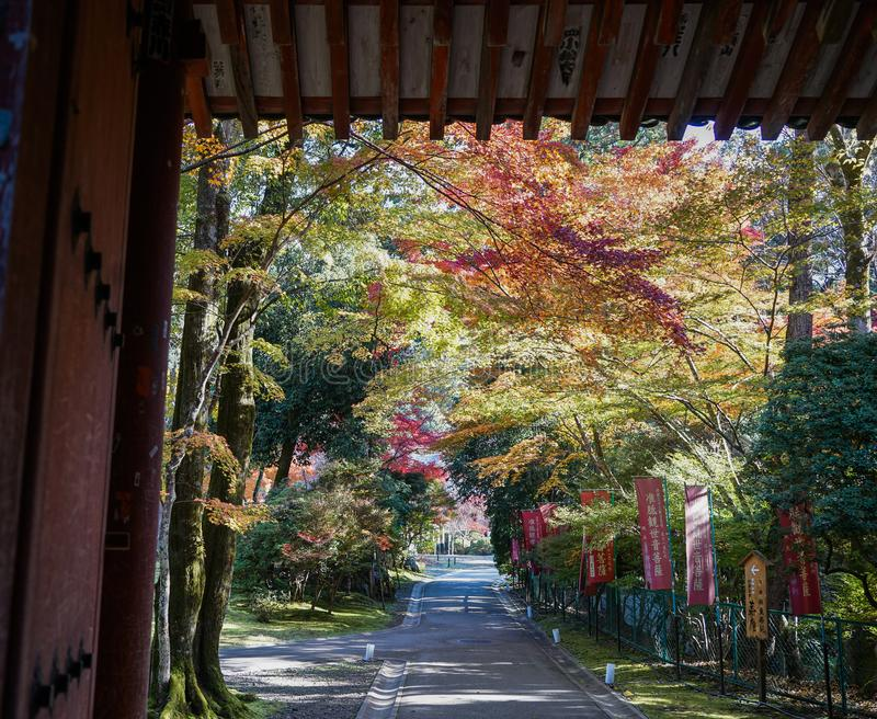 Autumn scenery of Kyoto, Japan stock image