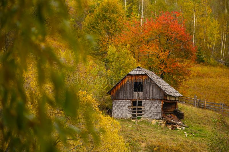 Autumn scenery landscape with colorful forest, wood fences and abandoned hay barn in Prisaca Dornei. Suceava County, Bucovina, Romania royalty free stock image