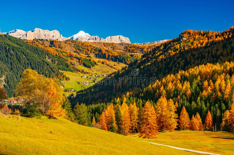 Autumn scenery with mountain hills and yellow trees illuminated by sun. Alta Badia, Dolomite Alps, Italy royalty free stock image