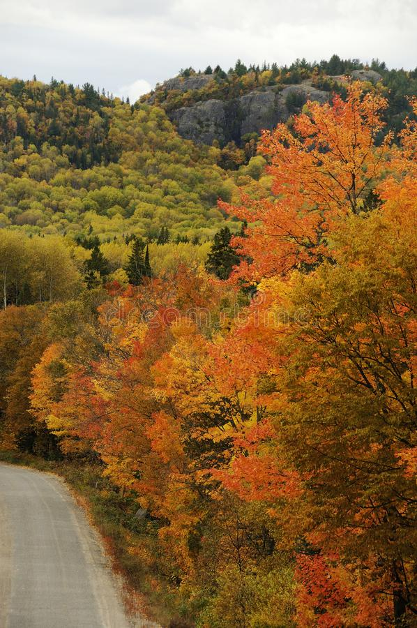 Autumn scenery photos.  Countryside road scenery multicolor trees, bleu sky, clouds.  Image. Picture. Photo stock photos