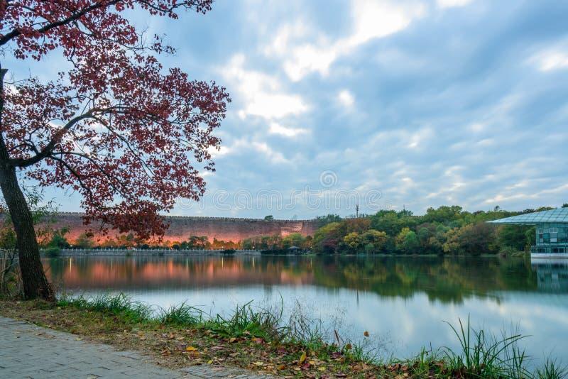 Sunset in autumn. Autumn scenery in qian lake ,Nanjing, China stock photos
