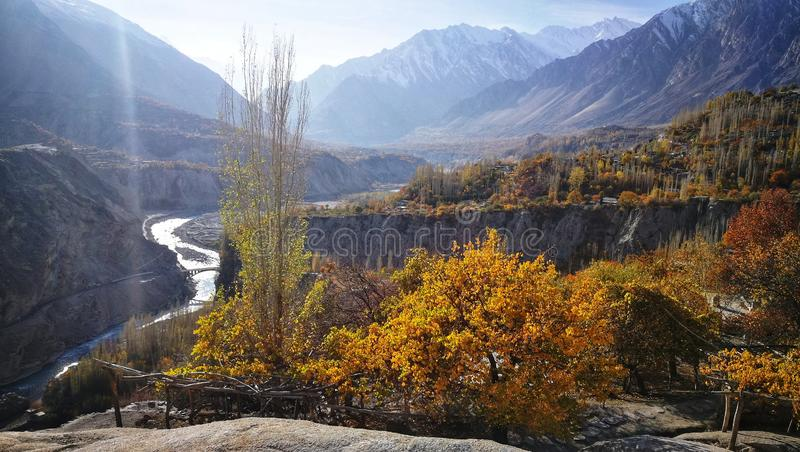 Autumn scenery of yellow leaves at hillside with curvy river, rock mountain and light blue sky in Hunza, North of Pakistan royalty free stock image