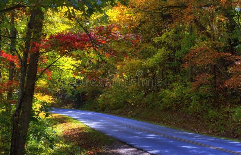 Autumn Scenic Drive a lo largo de Ridge Parkway azul en Caroli del norte imagen de archivo