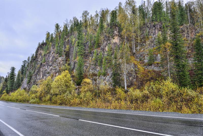 Mountain Road Through a Colourful Forest at Rainy Autumnal Weather stock image
