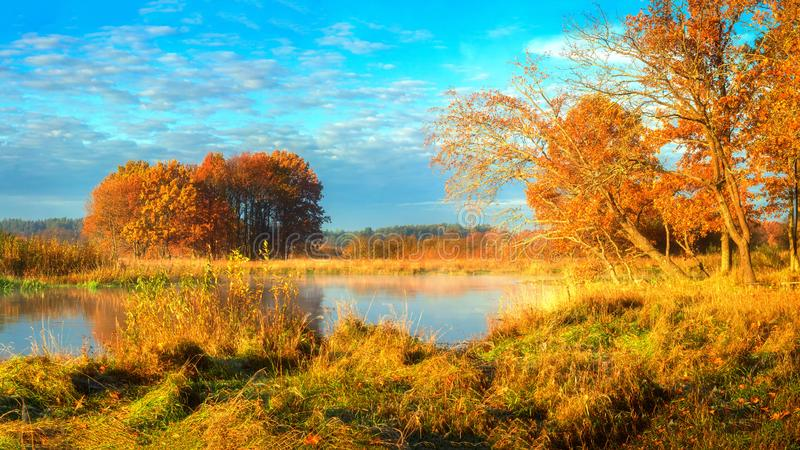 Autumn. Scenic autumn nature landscape on sunny morning. Yellow foliage on trees on river shore. Beautiful view on sunny autumn. Autumn. Scenic autumn nature stock image