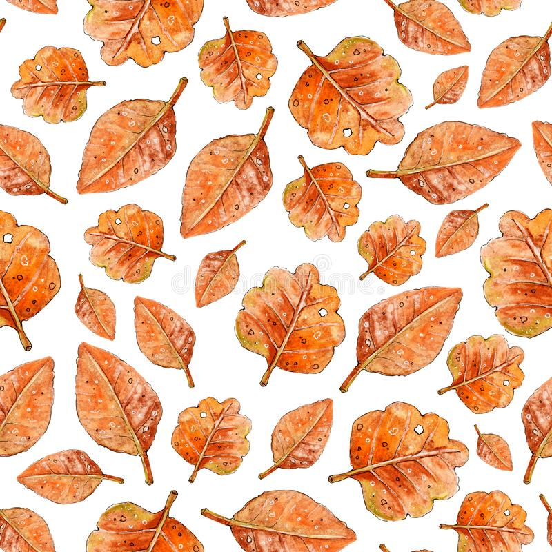 Autumn seamless pattern. Hand drawn watercolor illustration. Leaves hand drawn sketch. Autumn pattern colored sketch style. Design royalty free illustration