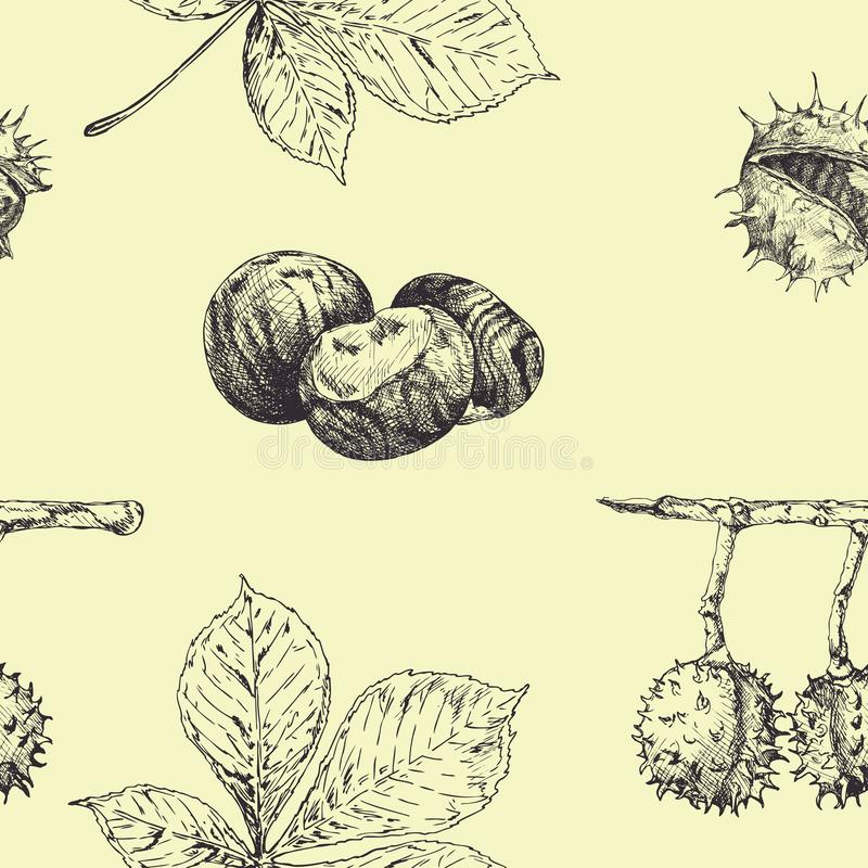 Autumn seamless vector pattern with chestnut leaves and nuts. Vintage fall seasonal decor. Hand drawn illustration stock illustration