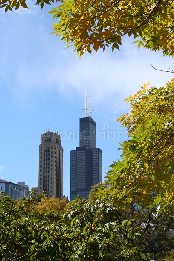 autumn sears tower obrazy stock