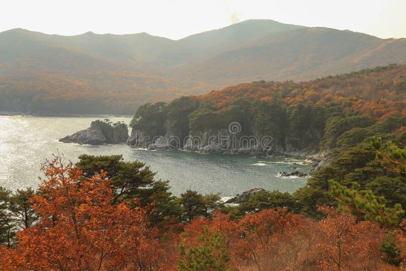 Autumn in seashore stock image