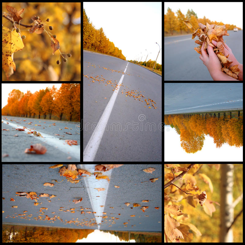 Download Autumn Season Beautiful, Collage Stock Images - Image: 17084314
