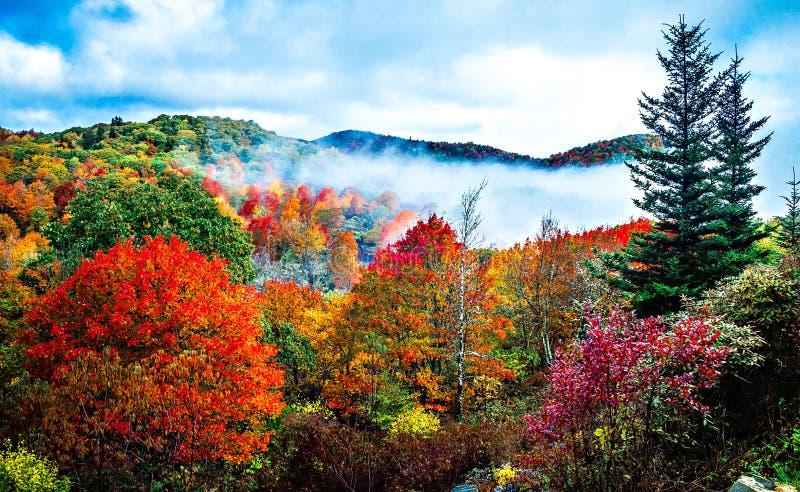 Autumn season on blue ridge parkway royalty free stock image