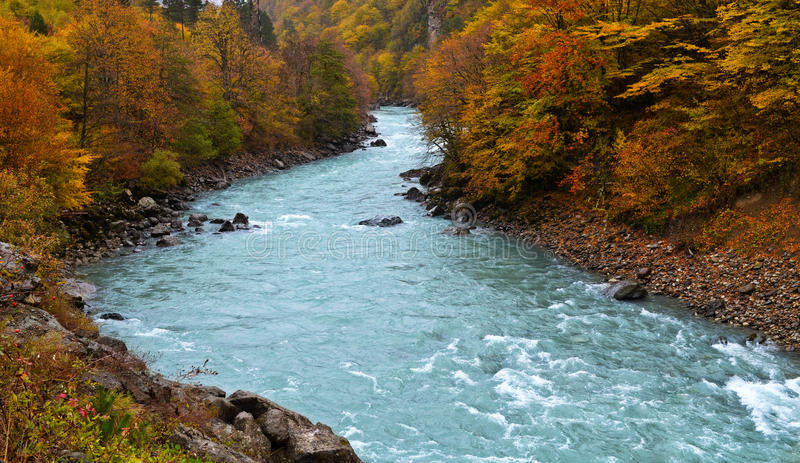 Download Autumn season stock image. Image of river, leaf, forest - 34551225