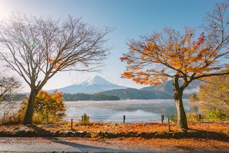 Autumn Season e la montagna Fuji con la luce ed il rosso di sera va nel lago Kawaguchiko, Giappone immagini stock