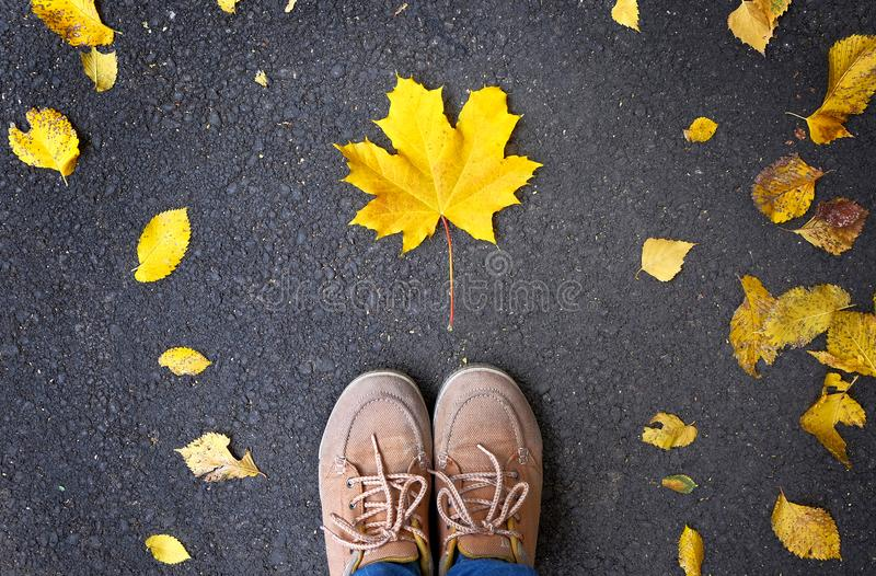 Autumn season, feet in shoes are on asphalt where leaves are lying.  royalty free stock image