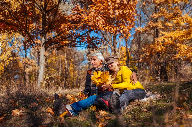 Autumn season fun. Senior couple hugging sitting in park. Man and woman relaxing outdoors royalty free stock images