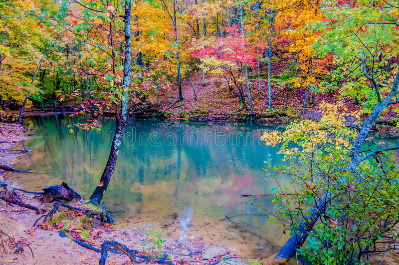 Autumn season at a lake royalty free stock photo