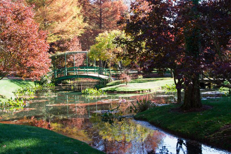 Autumn Season Landscape with Maple Trees and Water Reflections. Beautiful autumn season landscape with maple trees and their leaves changing color. There is a royalty free stock photo
