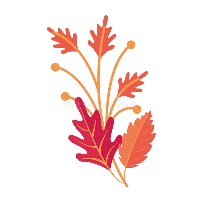 Autumn season leaves bouquet cartoon. Vector illustration graphic design royalty free illustration
