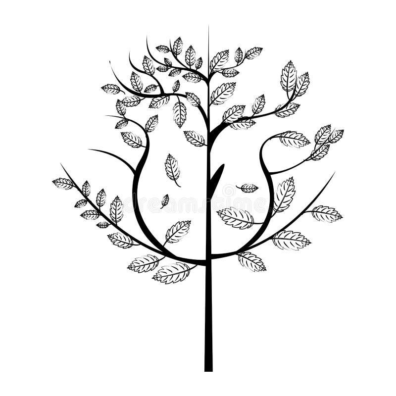 Autumn season leaves bouquet cartoon in black and white. Autumn season leaves bouquet cartoon vector illustration graphic design stock illustration