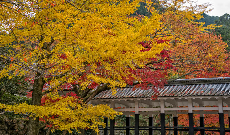 Autumn season in Nanzenji temple royalty free stock photography