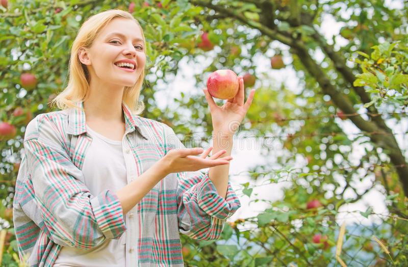 Autumn season in orchard. orchard, gardener girl in apple garden. healthy teeth. hunger. vitamin and dieting food. Happy. Woman eating apple. spring harvest royalty free stock photography