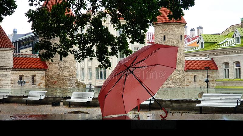 Autumn season rainy day in the city Tallinn Old Town Estonia lifestyle pink umbrella in the park medieval towers red roofs. Autumn rainy day in city  Old Town stock photos
