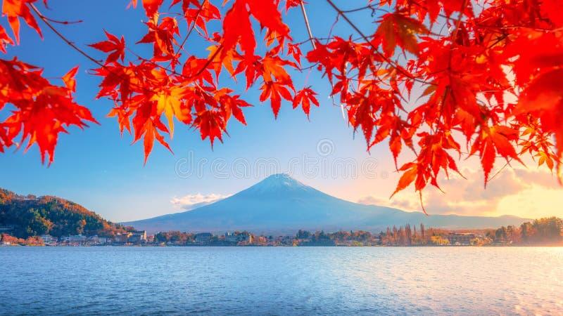 Autumn Season variopinto e la montagna Fuji con la nebbia di mattina e le foglie rosse nel lago Kawaguchiko è uno di migliori pos fotografia stock