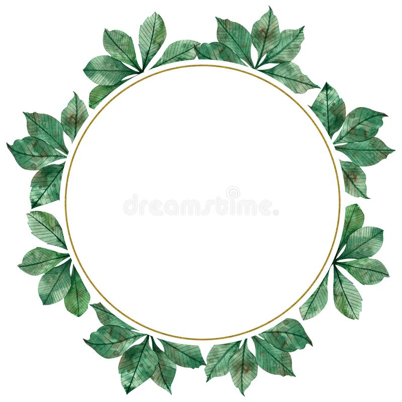 Autumn season watercolor circular frame: colorful green leaves, maple tree branches isolated on white background stock illustration