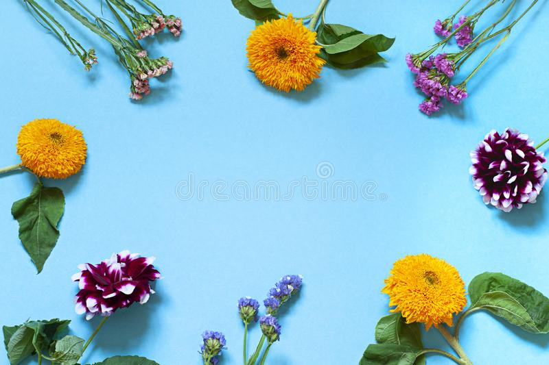Autumn seasonal flowers flat lay on the blue background. Top view. royalty free stock photos