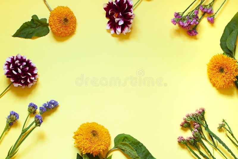 Autumn seasonal flowers flat lay on the yellow background. Top view. royalty free stock image