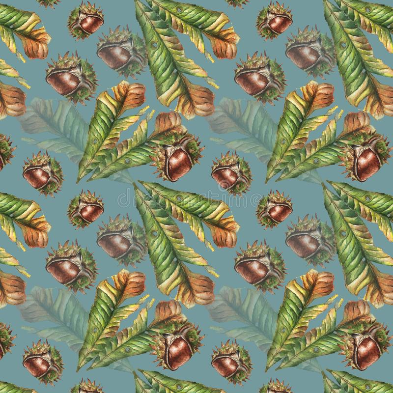 Seamless watercolor chestnut leaf and nut pattern royalty free stock photography