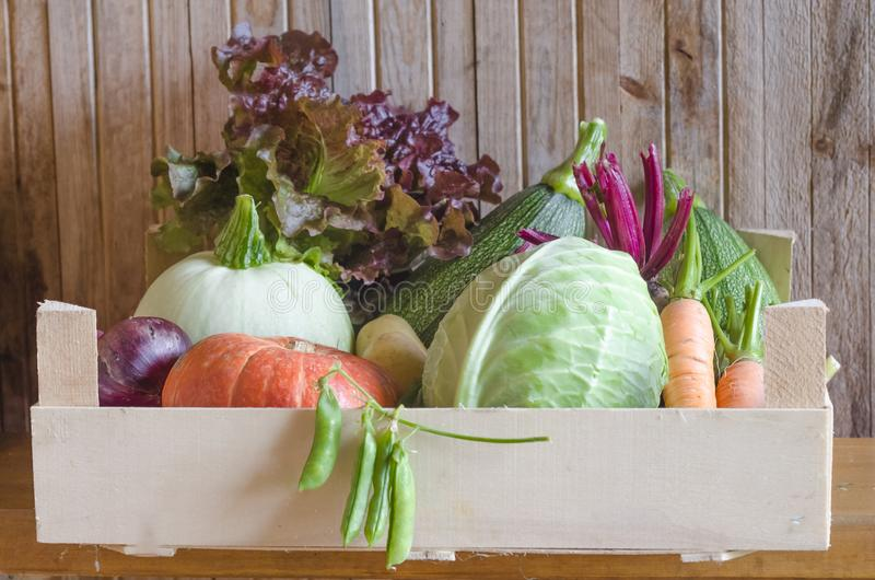 Autumn seasonal vegetables.  thanksgiving. new crop, fresh harvest  in basket, box on wooden background. Autumn seasonal vegetables. new crop, fresh harvest in stock image