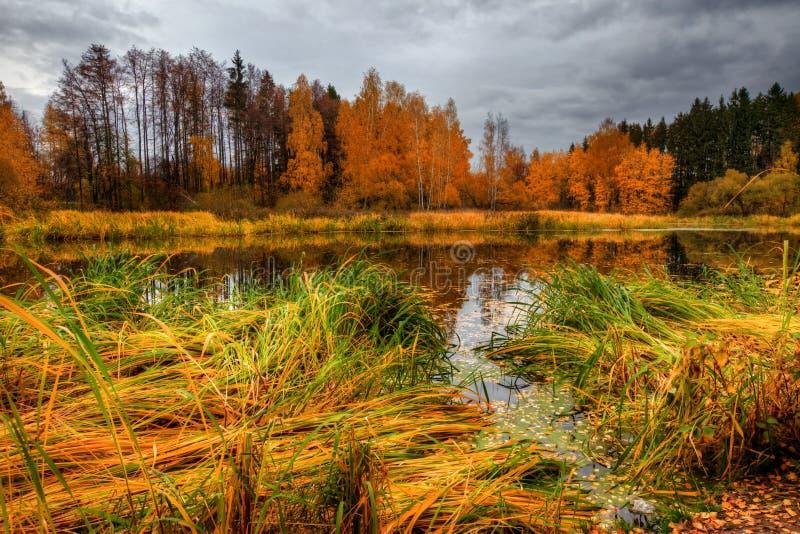 Autumn See stockfotos