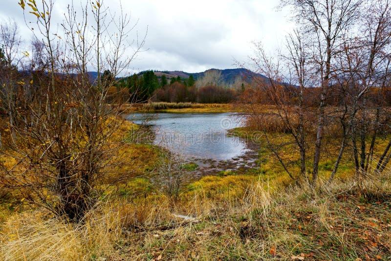 Autumn Seelandschaft Idaho, USA stockfotos