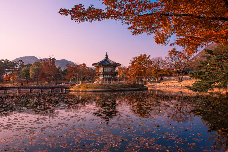 Autumn in seoul korea royalty free stock photos