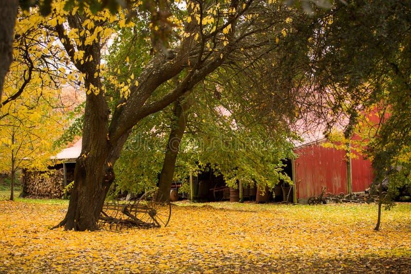 Autumn Shed royaltyfri fotografi