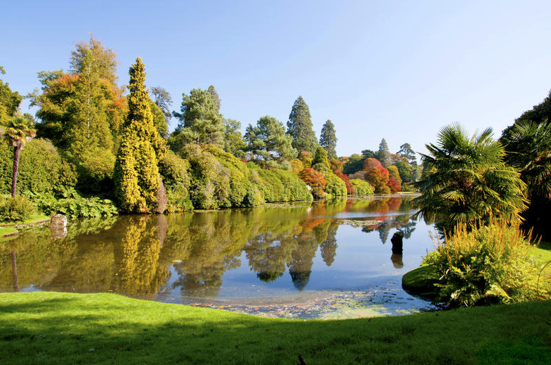Autumn in Sheffield Garden in south England. Reflection of colourful trees in a mirror-like small garden lake royalty free stock photos