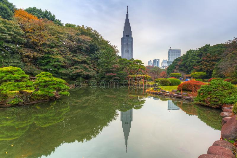 Autumn in the Shinjuku Park. Tokyo, Japan royalty free stock photography