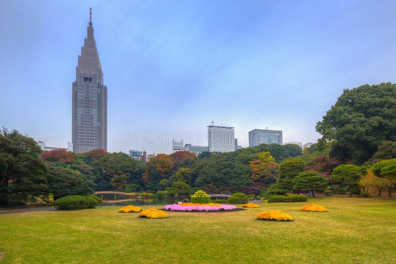 Autumn in the Shinjuku Park. Tokyo, Japan royalty free stock photo