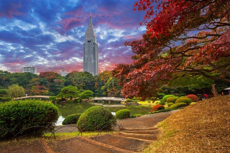 Autumn in the Shinjuku Park stock image