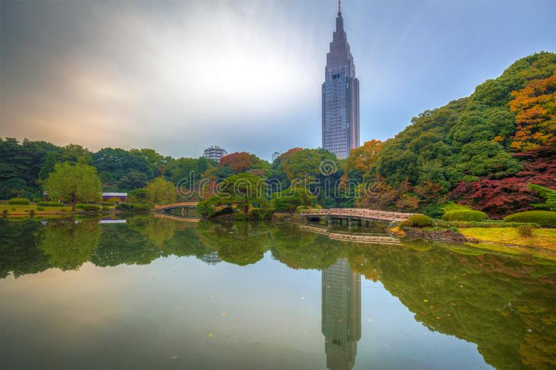 Autumn in the Shinjuku Park stock photos