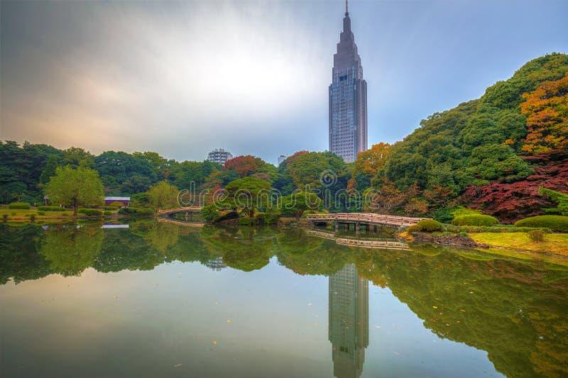 Autumn in the Shinjuku Park stock photos