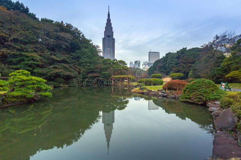 Autumn in the Shinjuku Park, Tokyo. Japan royalty free stock image