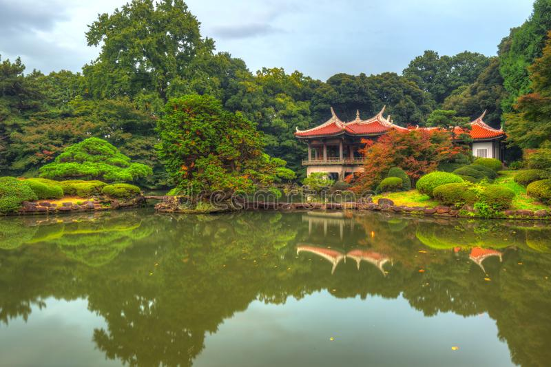 Autumn in the Shinjuku Park. Tokyo, Japan royalty free stock photos