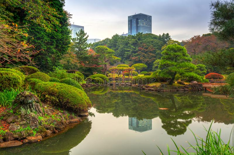 Autumn in the Shinjuku Park stock photography