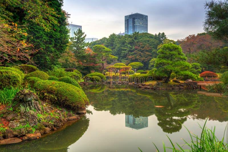 Autumn in the Shinjuku Park stock photography