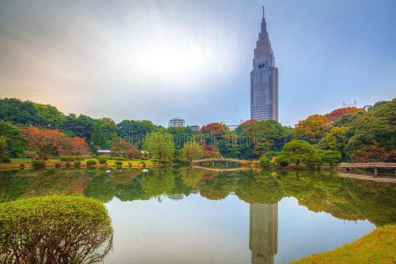 Autumn in the Shinjuku Park stock image