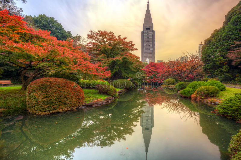 Autumn in the Shinjuku Park, Tokyo. Japan stock photo